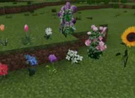 Текстуры Better Grass для MCPE 1.2