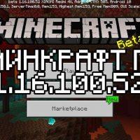 Скачать Майнкрафт 1.16.100.52 Бесплатно