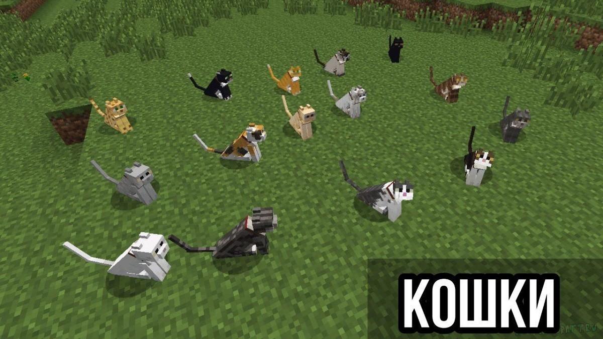 Кошки в Майнкрафт ПЕ 1.8.1