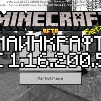 Скачать Майнкрафт 1.16.200.53 Бесплатно