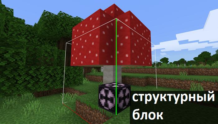 Структурный блок в Майнкрафт ПЕ 1.13.0