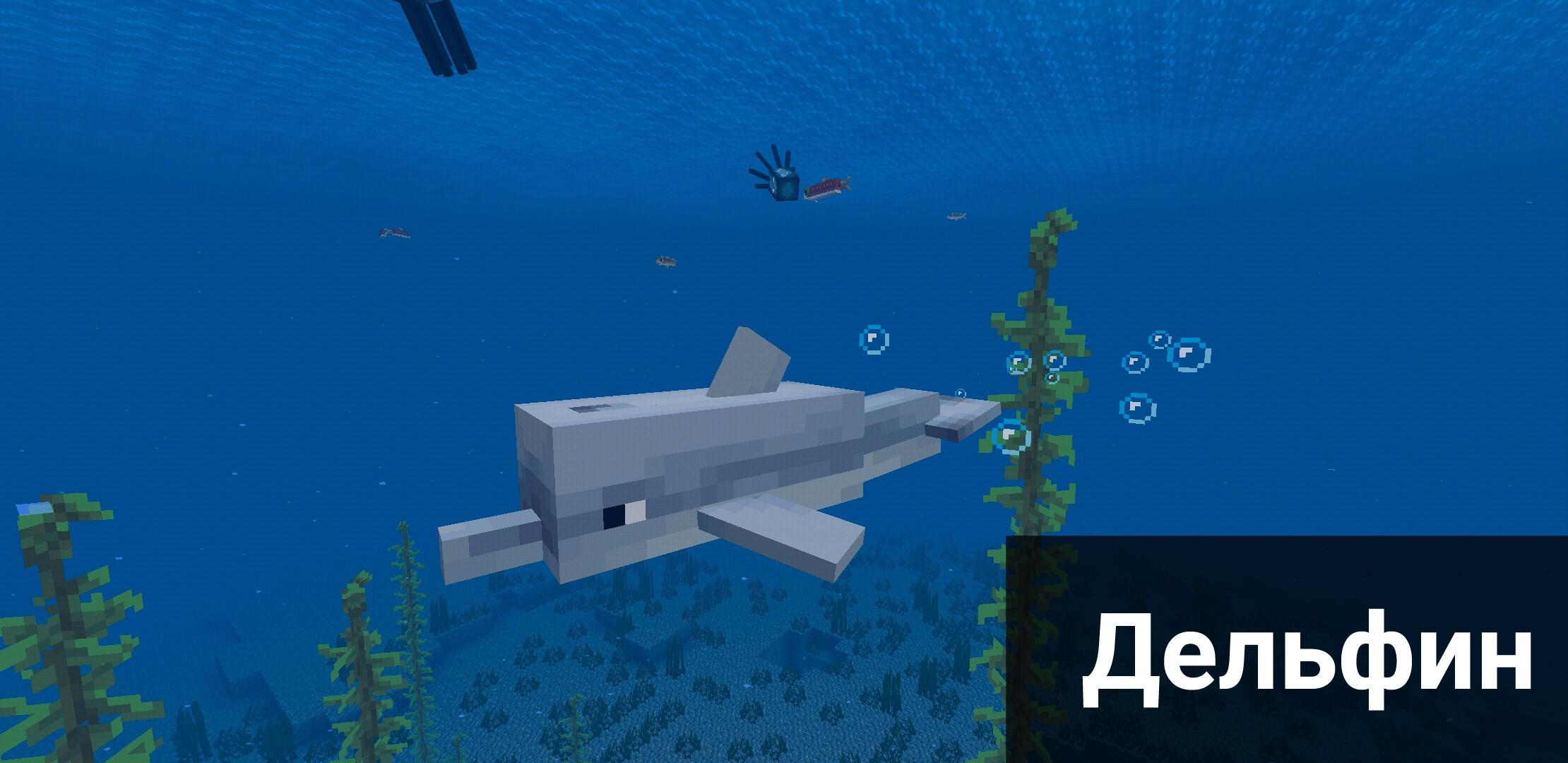 Дельфин в Майнкрафт ПЕ 1.4.4