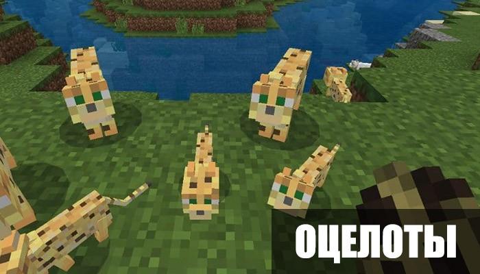 Оцелоты в Minecraft PE 1.8.0.11
