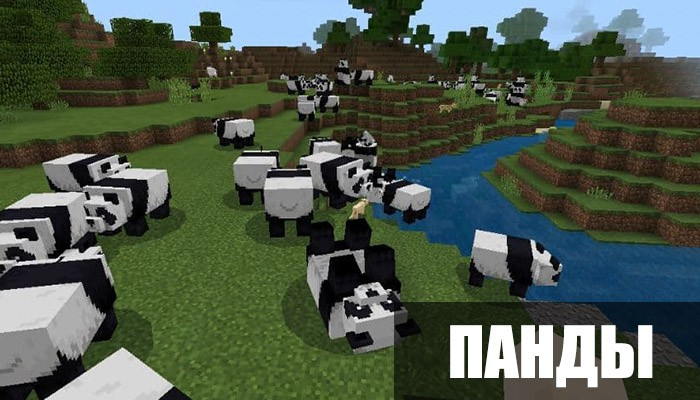 Панды в Minecraft PE 1.8.0.11
