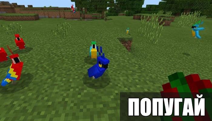 Попугай в Minecraft PE 1.2.14.3