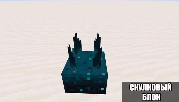 Скулковый блок в Minecraft 1.16.210.57