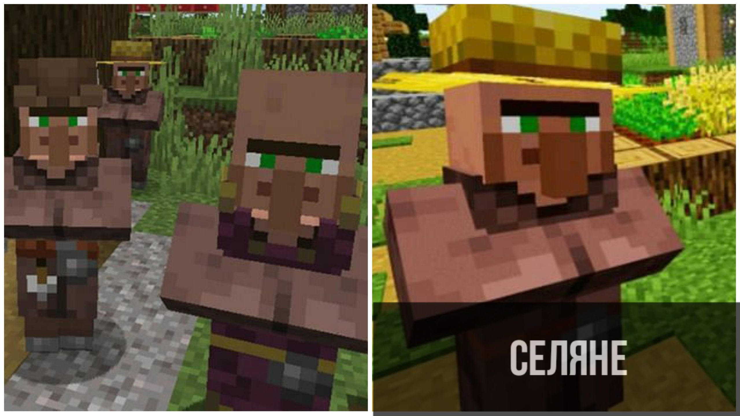Жители в Minecraft PE 1.11.0.3