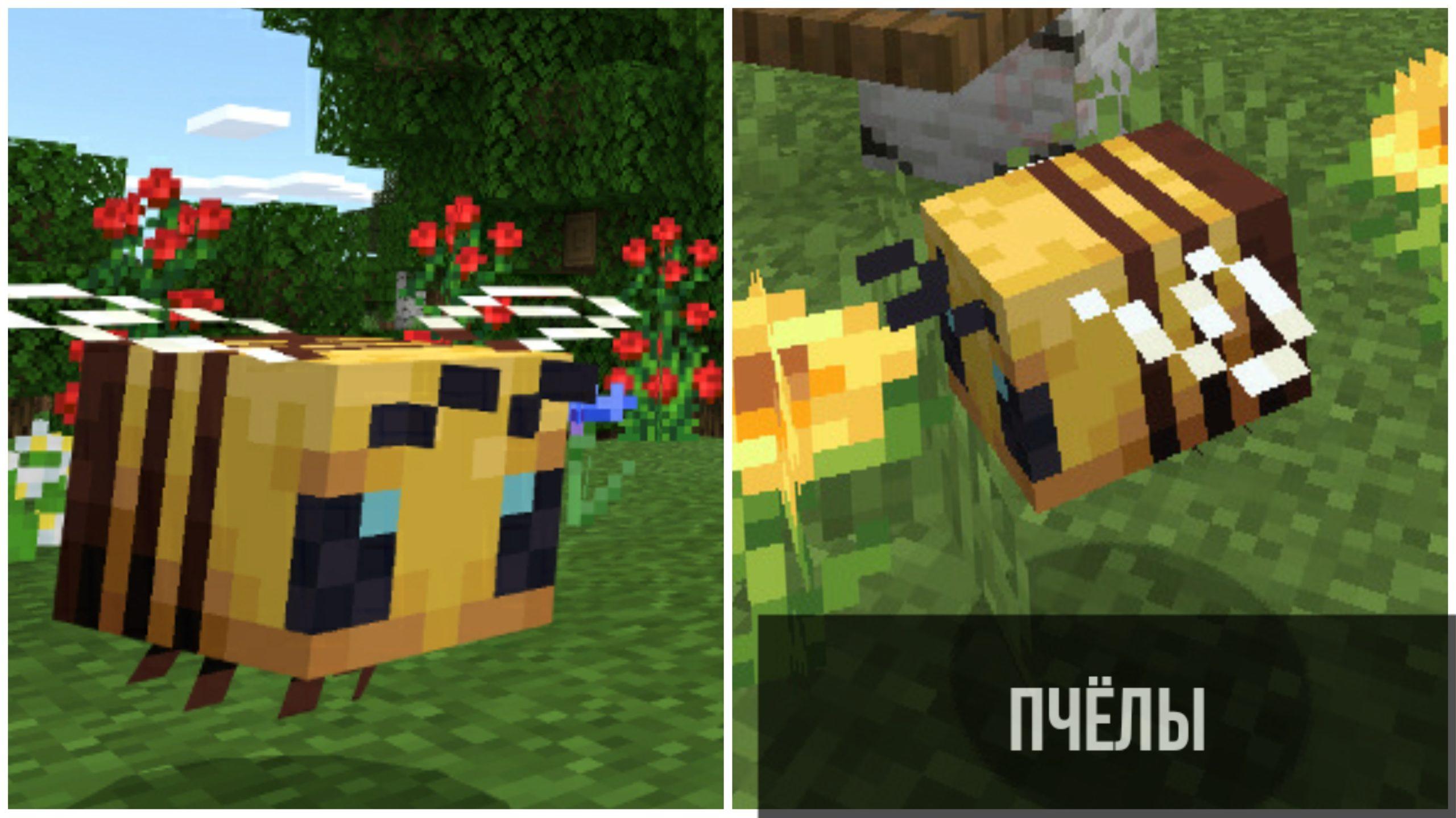 Пчёлы в Minecraft PE 1.14.0.1