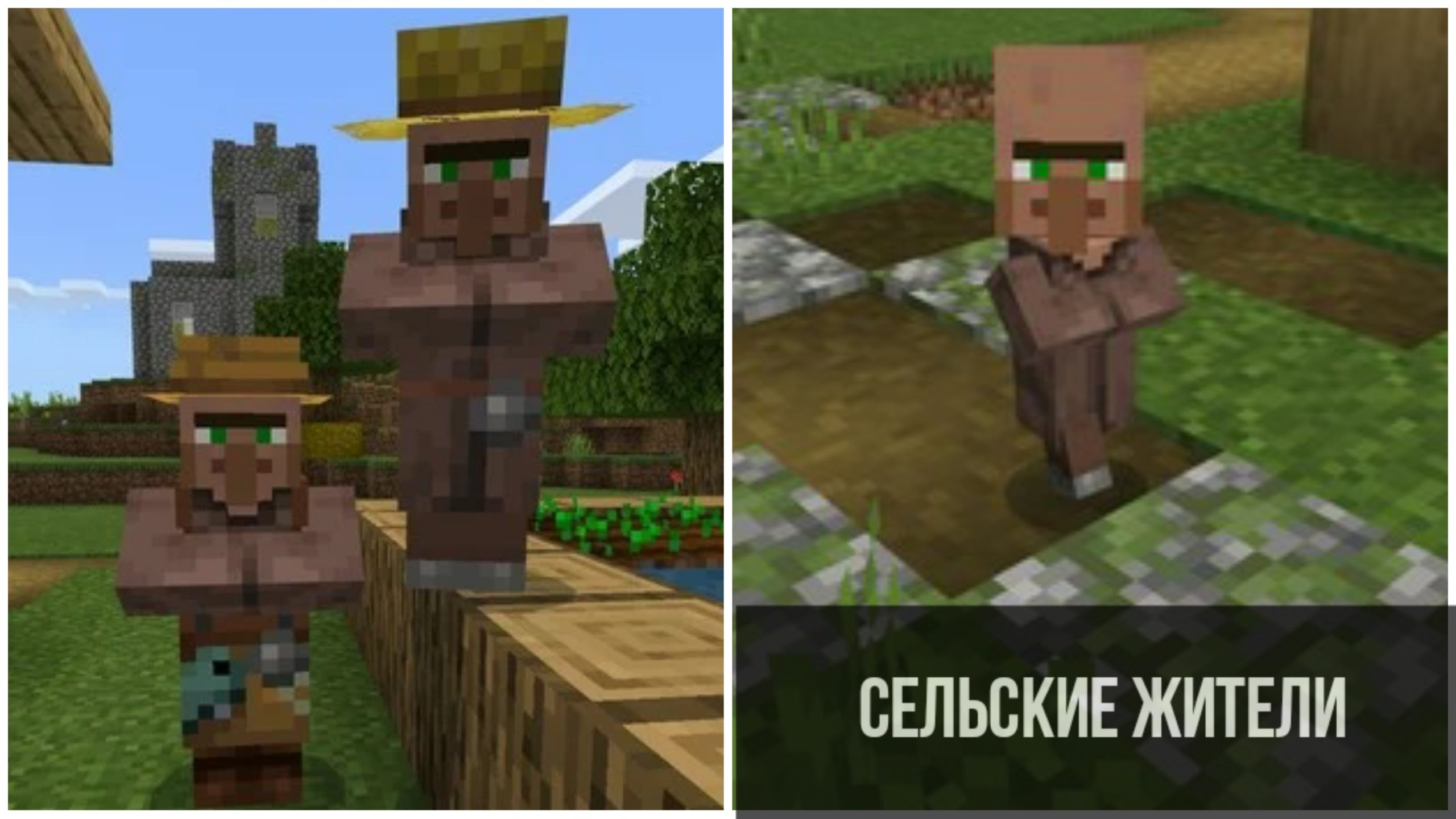 Сельские жители в Minecraft PE 1.11.0.4