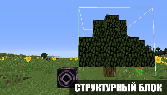 Структурный блок в Майнкрафт 1.13.0.4