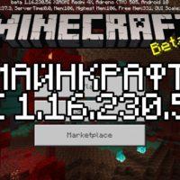 Скачать Майнкрафт 1.16.230.56 Бесплатно