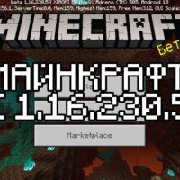 Скачать Майнкрафт 1.16.230.54 Бесплатно